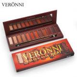 Maquillage de marque Veronni 12 couleurs Matte roche fondue de chaleur chatoiement de palette yeux nus fard à paupières Ombre avec brosse