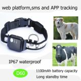 Wasserdichter Haustiere GPS-Verfolger mit 1100mAh Batterie D60