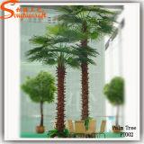 Albero artificiale di plastica decorativo esterno di Plantts della palma