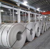 Dubai 201 202 304 316 304L 316L Proveedor de la hoja de acero inoxidable 430
