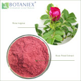 Наиболее востребованных травяной природные качества закрывается извлечения, лепестковый извлечения, Роза Flower Extract (Rosa rugosa) 10: 1