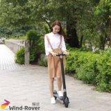 Scooter électrique pliable de la mobilité E de roue de la boudineuse deux de vent mini