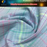 Tessuto elastico tinto filato di nylon per l'indumento