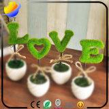 Bela planta verde emulacional para a personalidade