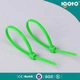 Serre-câble en nylon auto-bloqueur de serre-câble d'Igoto