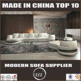 Il sofà unico del salone ha impostato con cuoio genuino (LZ-105)