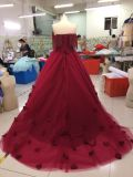 Aoliweiyaの卸売は実行する夕方のプロムの服をカスタマイズする
