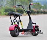 2016 신제품 탄소 2 바퀴 전기 스쿠터 800W Citycoco 스쿠터