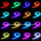 IP65 60LEDs 12V 5050 RGB LED Strip
