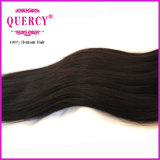 Fornitori indiani dei capelli del Virgin diritto del tessuto dei capelli di qualità