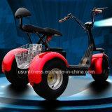 motocicleta 3wheels elétrica com o motor 1000W