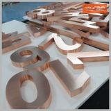 3D a balayé l'alphabet fabriqué de numéro de Chambre de lettre de lettre de la Manche en métal de finissage
