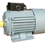 Y2 moteur à induction Squirrel-Cage asynchrone triphasé de moteurs à induction de Mme Electric