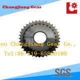 Übertragungs-rostfreies Kettenrad für doppeltes spezielles Kettenkettenrad
