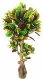 Hx0101PU 인공적인 Bonsai 잎 나무