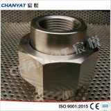 L'acciaio inossidabile BS3799 ha avvitato l'unione A182 (S31727, S32053)