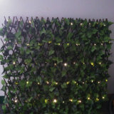 Pilas cerca de alambre verde o el empleo cadena de luz LED del jardín