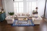 Sofà del salone con il sofà di cuoio di Chesterfield per la mobilia moderna del sofà
