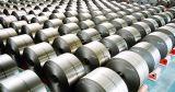 Горячая окунутая гальванизированная стальная катушка (Dx51D, PPGI, SGCC, ASTM653)