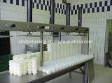 De Lopende band van de Kaas van de Lijn van de Verwerking van de melk