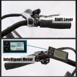 De Motor Elektrische bikelweb-L2803 van Ce En15194 250W)