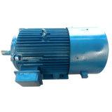 Generatore magnetico permanente personalizzato di energia idroelettrica 200kw~600kw