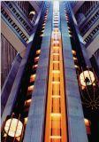 CE approuvé petit ascenseur d'observation de salle de machine (GRO20)