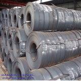 Warm gewalzter Stahlstreifen (SS400, Q195, Q235, Q345, SPHC)