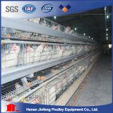 Strumentazione automatica dell'azienda avicola da vendere in Africa
