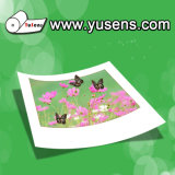 220GSM Double Sided Glossy Inkjet Photo Paper