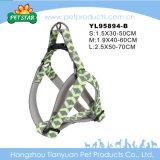 중국 제품 애완 동물은 이용한다 손잡이 (YL95894-A)를 가진 개 목걸이를