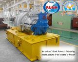 生物量の発電所EPC Contractor&Financierの再生可能エネルギー