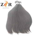 加工されていなく自然なカラー倍によって引出されるインドの毛の人間の毛髪のよこ糸