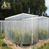 HDPE 플라스틱 곤충 증거 그물 또는 반대로 UV 온실 덮개 반대로 진디 그물 또는 고운 망사 명확한 반대로 곤충 그물