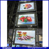 Indoor Shop signe Cristal Léger (GD-CL)