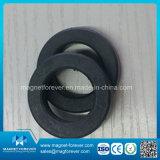 Magnete permanente dell'altoparlante del magnete del ferrito dell'anello