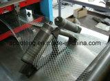 Usine de treillis métallique de la construction de la Chine