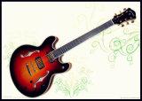 335 de elektrische Gitaar van de Jazz (yz-25S)