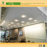 Отсутствие потолка MGO пыли Perforated
