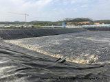 Projet de biogaz pour une ferme porcine