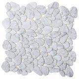 Mosaico cristalino de cristal de la carrocería completa