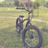 2016 Novo Estilo de bicicletas eléctricas com pneu de gordura