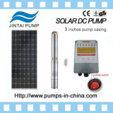 Jintai 3 Jahre wasser-Pumpe 48V 1000W des Garantie-Edelstahl-304 Solarschwanzloser Gleichstrom-Motor-