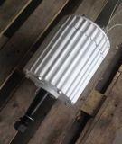 gerador de ímã permanente da C.C. de 2kw 48V baixo RPM