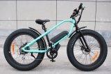 26 Zoll-fetter Gummireifen-elektrisches Fahrrad