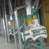 Compact Blé Maïs Broyage de maïs grain Mill machine à fraiser (100t)