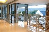 Barandilla de acero inoxidable/balaustrada/valla de balcón o plataforma de visualización