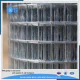 Rinforzo della rete metallica saldata galvanizzata 6X6 10/10