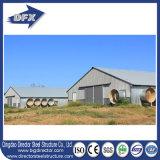 低価格の養鶏場の家の熱い電流を通された鉄骨フレームのプレハブの鳥小屋の家
