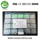Corchete ortodóntico de cerámica de Yahong del nuevo corchete ortodóntico dental